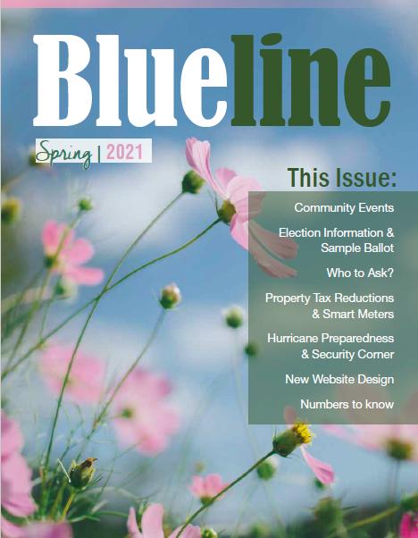 Newsletter Spring 2021
